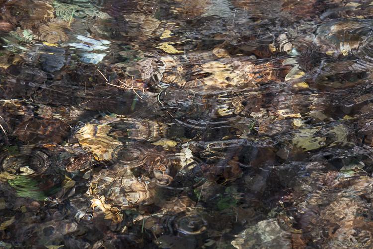Surface d'eau s'apparentant à un tableau