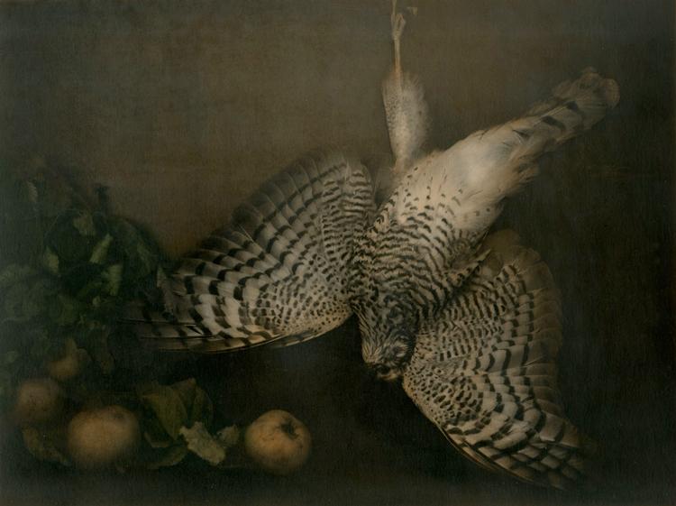 Belle référence aux natures mortes en peinture.