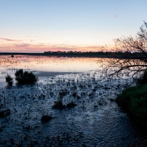 Photographie de paysage : Etang de Vaccares