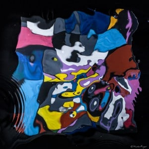 Oeuvre artistique contemporaine de Nicolas Roger