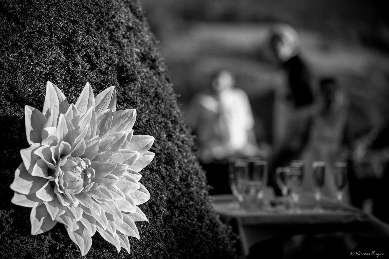Photographie de décor de mariage